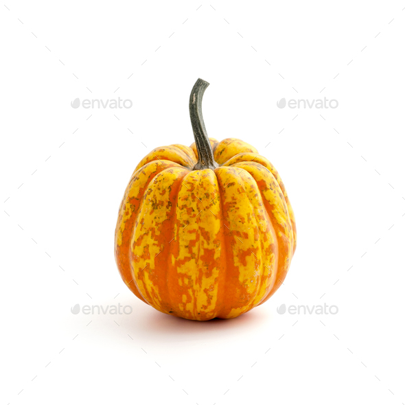 Ripe orange-green pumpkin on a clean white background. Isolated. - Stock Photo - Images