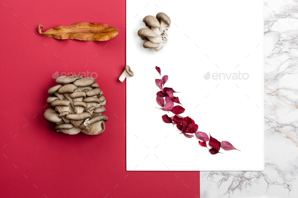 A composition of fresh oyster mushrooms and dry autumn leaves on - Stock Photo - Images