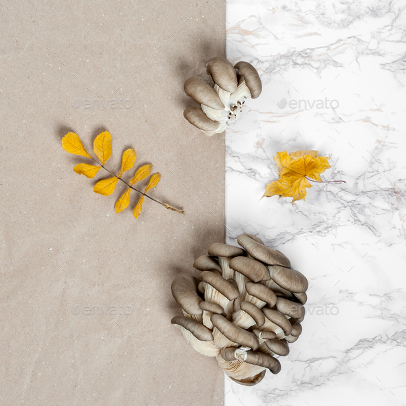 Oyster mushrooms on a marble table and napkin from kraft paper. - Stock Photo - Images