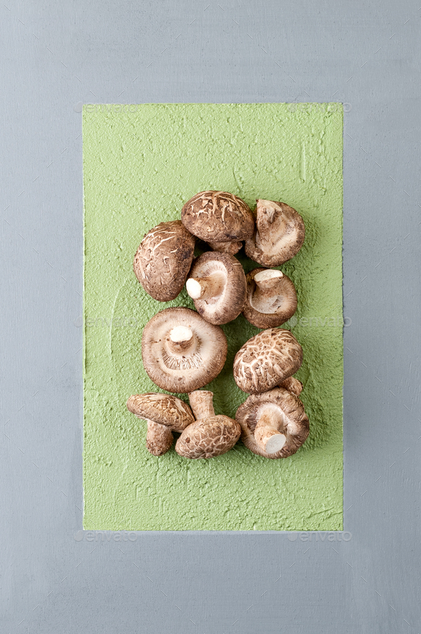 Fresh mushrooms shiitake on an abstract gray-green background. - Stock Photo - Images