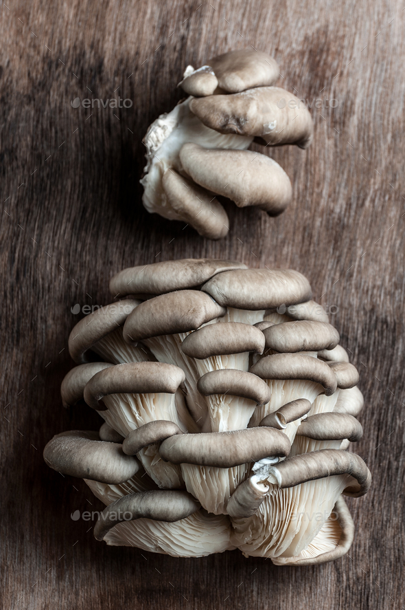 Fresh Oyster mushrooms on an old wooden background. - Stock Photo - Images