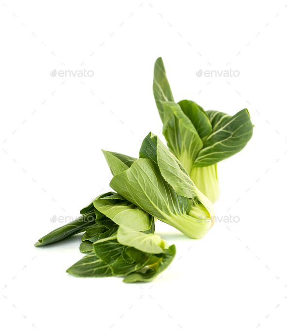 Salad Pak-choi (Chinese cabbage) on a clean white background. Is - Stock Photo - Images