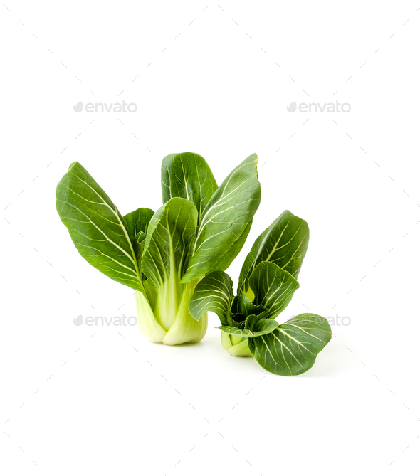Fresh green salad Pak-choi (Chinese cabbage) on a clean white ba - Stock Photo - Images
