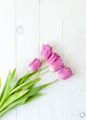 Pink tulips on a white wooden table. . - PhotoDune Item for Sale
