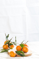 Ripe mandarins with twigs on a round board. A photo with negativ - PhotoDune Item for Sale