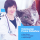 Veterinarian Promo Slideshow - VideoHive Item for Sale