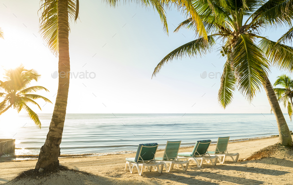 Beach Vacation With Palmtrees And Deckchairs - Stock Photo - Images