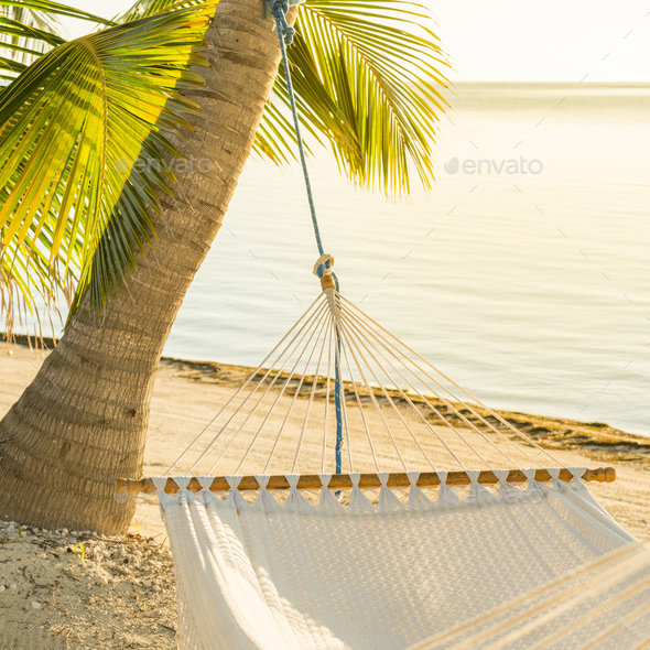 Peaceful Vacation Hammock - Stock Photo - Images