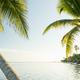 Caribbean Beach Belize - PhotoDune Item for Sale