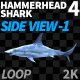 Hammerhead Shark 4 Side View-1 - VideoHive Item for Sale