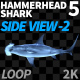 Hammerhead Shark 5 Side View-2 - VideoHive Item for Sale