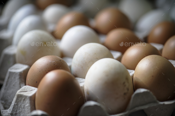 Closeup of fresh organic eggs - Stock Photo - Images