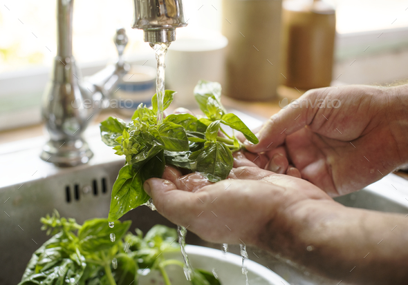 A person washing basil under running water food photography recipe idea - Stock Photo - Images
