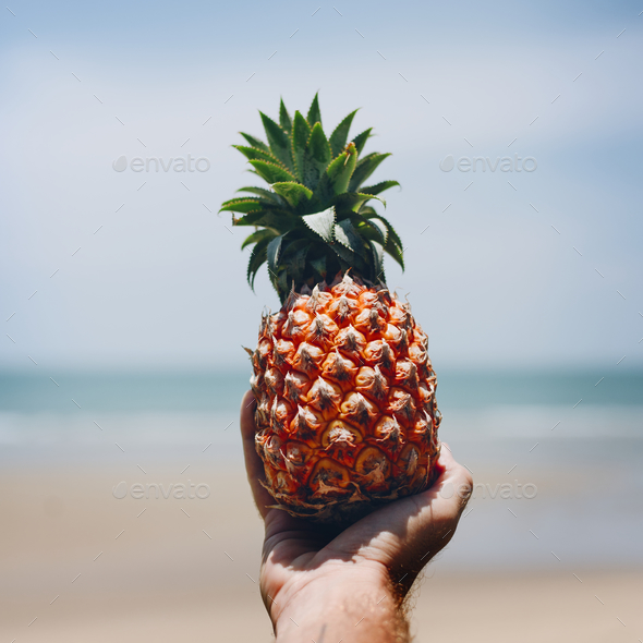 Man holding a pineapple at the beach - Stock Photo - Images