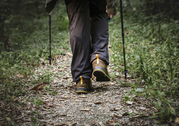 People trekking in the forest - Stock Photo - Images