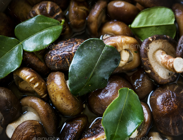 Mushroom close up food photography recipe idea - Stock Photo - Images