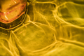 Yellow abstract light reflection background - PhotoDune Item for Sale