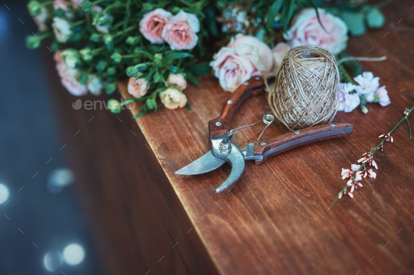 Still life of flowers and garden scissors - Stock Photo - Images