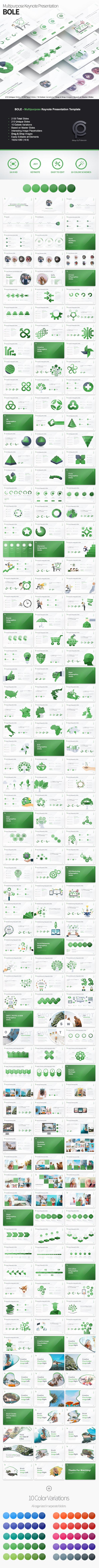 Bole - Multipurpose Keynote Presentation - Business Keynote Templates
