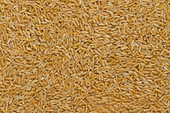 Kamut Khorasan wheat, surface and background - Stock Photo - Images
