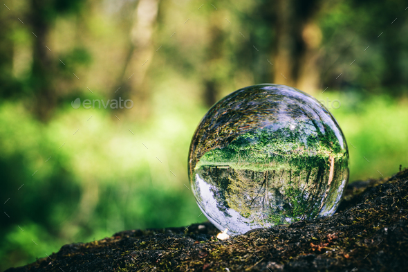 Crystal ball standing on a trunk, reflecting a forest. - Stock Photo - Images