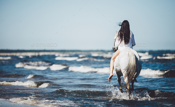 Girl riding on the white stallion in the sea. - Stock Photo - Images