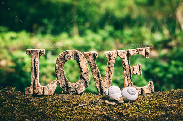 A couple of snails and LOVE writing standing on the wooden trunk. - Stock Photo - Images