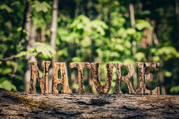 NATURE writing made from wooden letters in the forest - Stock Photo - Images