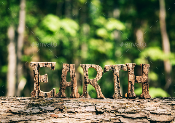 EARTH writing made from wooden letters in the forest - Stock Photo - Images