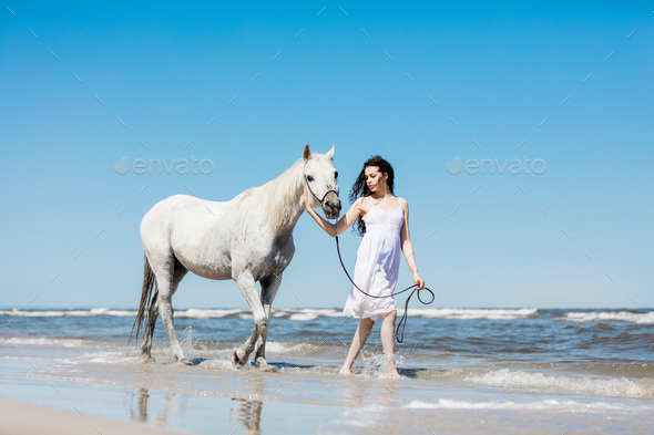 Girl walking on the beach with white horse. - Stock Photo - Images
