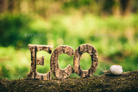 ECO writing made from wooden letters and a snail - Stock Photo - Images