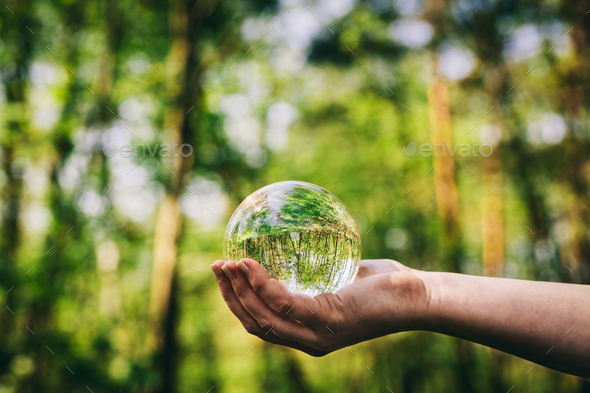 Woman's hand holding a glass sphere in the woods. - Stock Photo - Images