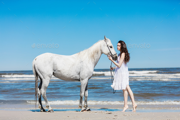 Young girl touching white horse's head - Stock Photo - Images