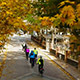 Autumn Cyclists In The City - VideoHive Item for Sale