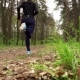 Runner Athlete Running on Forest Trail - VideoHive Item for Sale