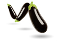 Three eggplants in a row floating in the air, on white background - PhotoDune Item for Sale