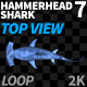 Hammerhead Shark 7 Top View - VideoHive Item for Sale