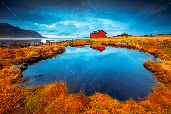 Lofoten islands - Stock Photo - Images