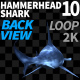 Hammerhead Shark 10 Back View - VideoHive Item for Sale
