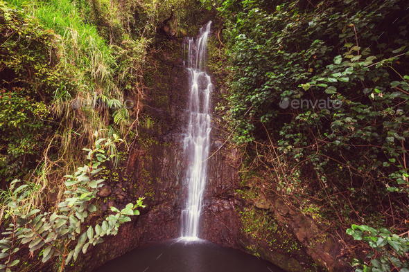 Waterfall on Hawaii - Stock Photo - Images