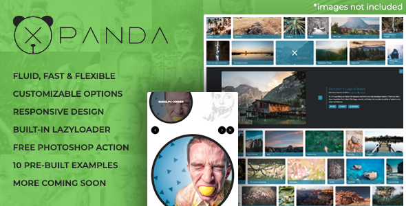 XPANDA - Responsive Gallery Content Expander Plugin            Nulled