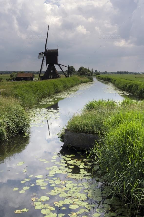 The Scheijwijkse windmill - Stock Photo - Images