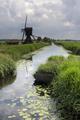 The Scheijwijkse windmill - PhotoDune Item for Sale