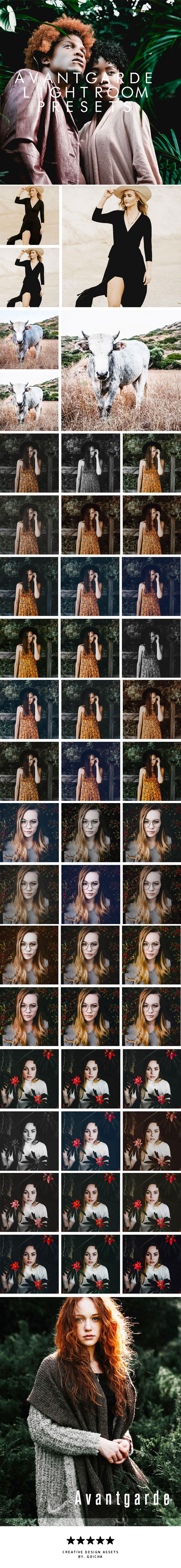 Avantgarde Lightroom Presets - Lightroom Presets Add-ons