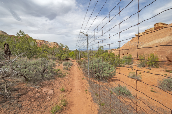 Border Fence in the Wilderness - Stock Photo - Images