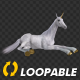 Unicorn - White - Laying Loop - VideoHive Item for Sale