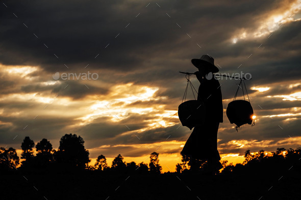 farmer is walking at sunset - Stock Photo - Images
