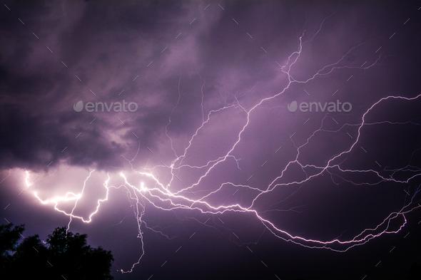 Spider Web Lightning - Stock Photo - Images