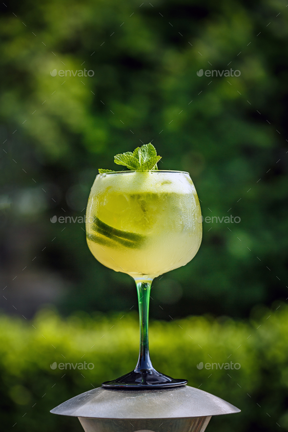Fresh summer cold elderflower lemonade - Stock Photo - Images