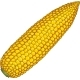 Corn Cob Without Leaves - GraphicRiver Item for Sale